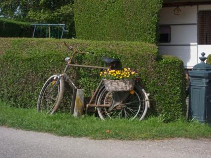 Bike flowerbox