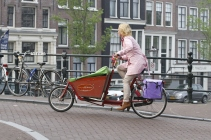 colorful Amsterdamer