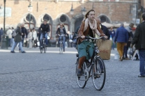 Belgian cyclists